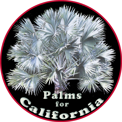 Palms For California
